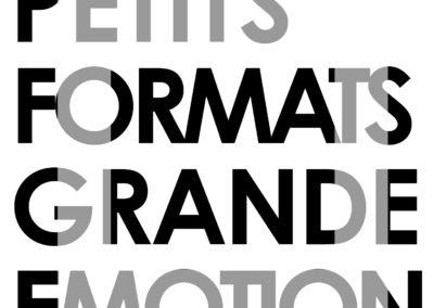 Galerie François Fontaine - Petits Formats, Grande Emotion